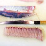 cutting yellowtail into sashimi photo