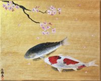 Japanese painting Koi fish with Sakura