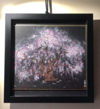Japanese painting art Sakura cherry blossoms